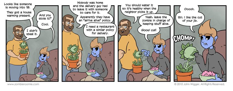 Plant vs. Zombie